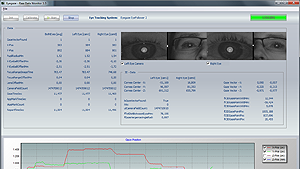 Eye tracking raw data
